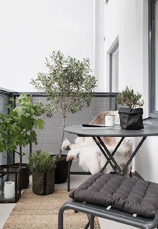 Small balcony with lanterns and plants